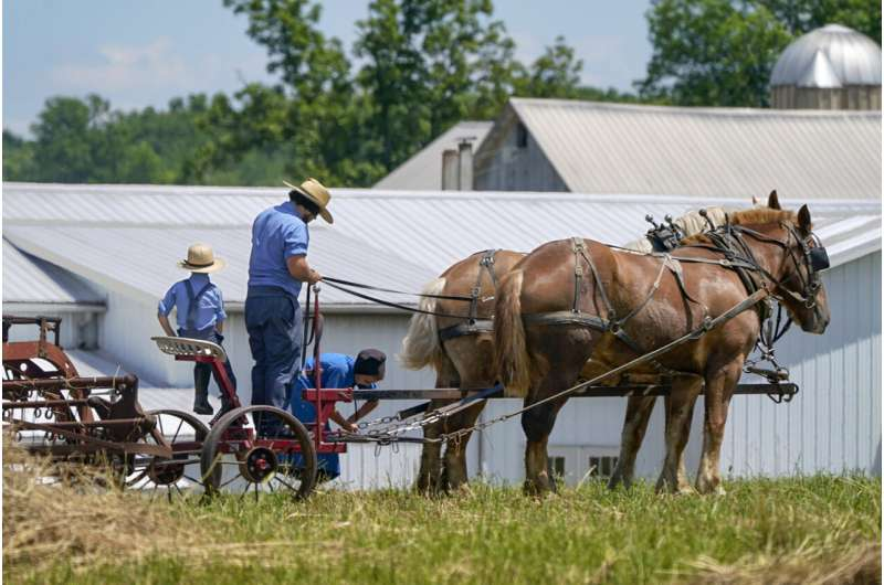 Amish put faith in God's will and herd immunity over vaccine