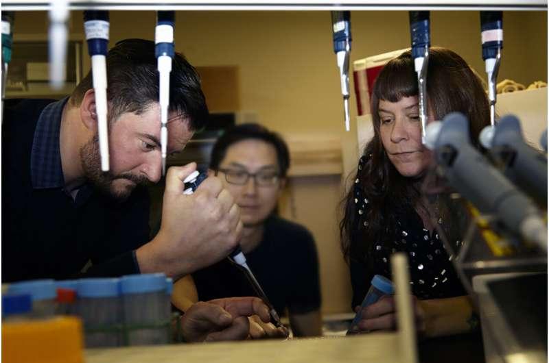 & amp;  nbsp;  Το DNA από την 93χρονη πεταλούδα επιβεβαιώνει την πρώτη περίπτωση εξαφάνισης εντόμων από τον άνθρωπο στις ΗΠΑ
