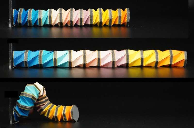 Un bras robotique omnidirectionnel semblable à une pieuvre qui peut s'étirer, se plier et se tordre sans moteur