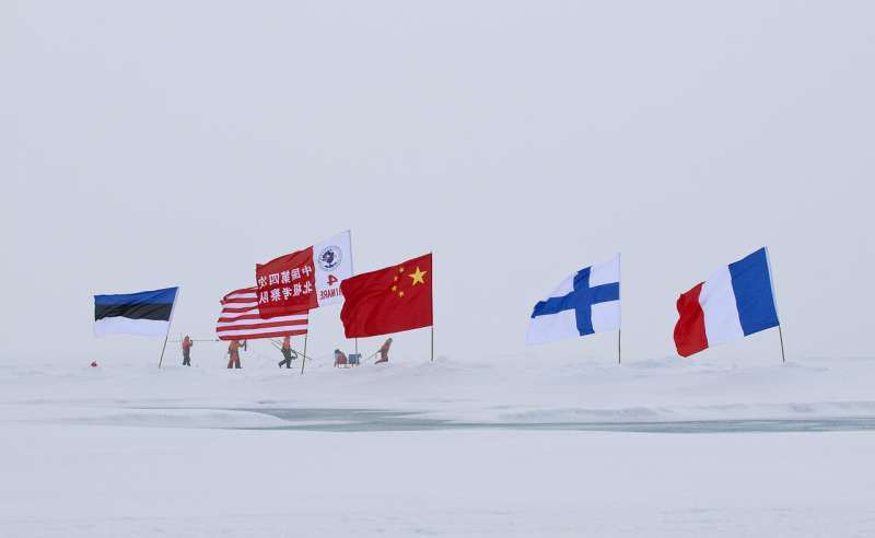 An agile superpower -- China's various roles in Africa and the Arctic