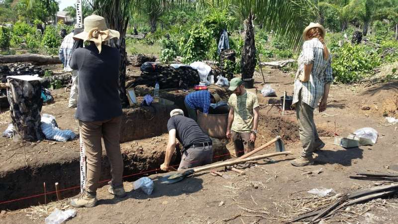 Ancient Amazonian farmers fortified valuable land they had spent years making fertile to protect it