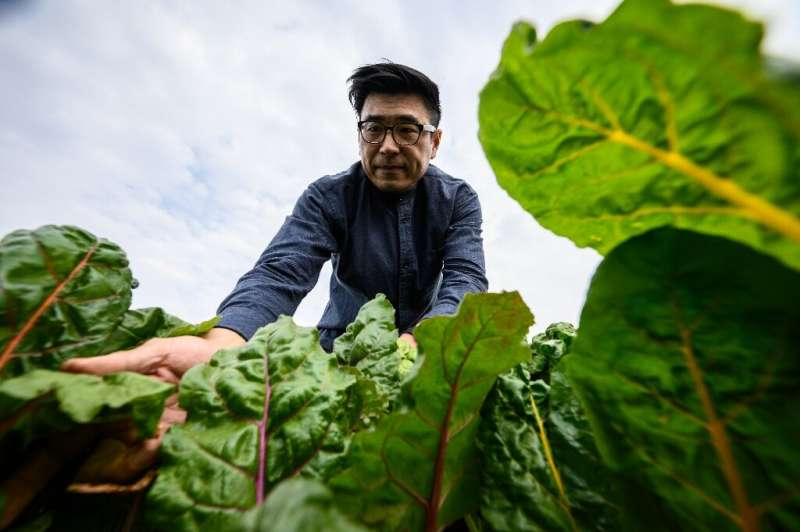 Andrew Tsui of Rooftop Republic sees the farms as a way for people to reconnect with how sustainable food can be produced in wha