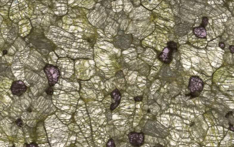 A new, clearer insight into Earth's hidden crystals
