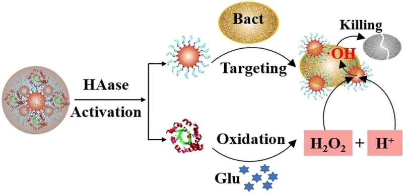 Antibacterial Nanozymes: Healing chronic wounds with nanochemistry