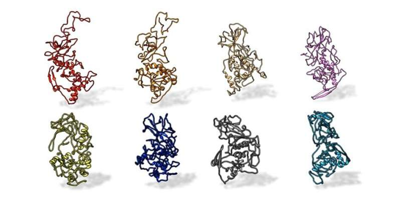 Antibody binding-site conserved across COVID-19 virus variants