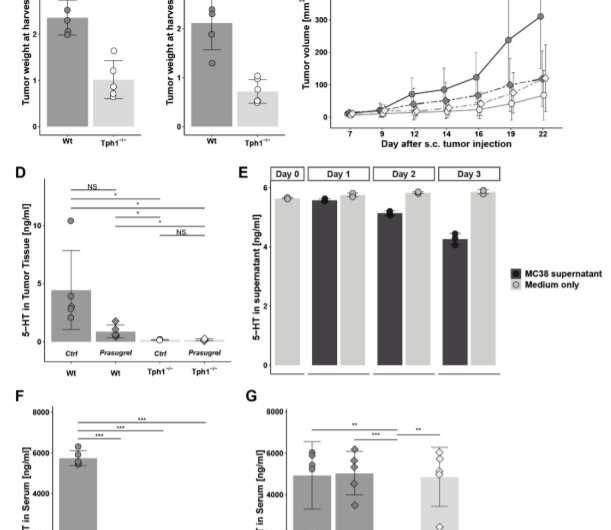 Antidepressants inhibit cancer growth in mice