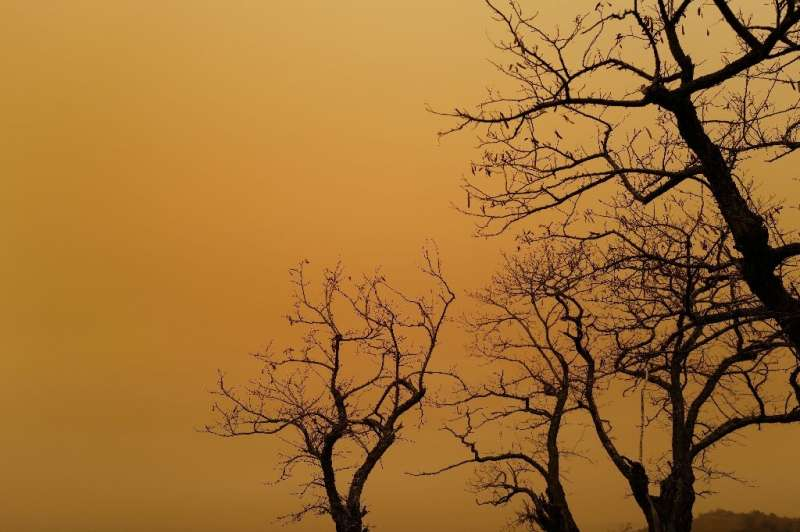 A previous dust cloud in early February darkened the skies in many regions of western Europe