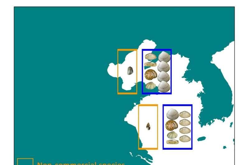 La acuicultura convierte la biodiversidad en uniformidad a lo largo de la costa de China