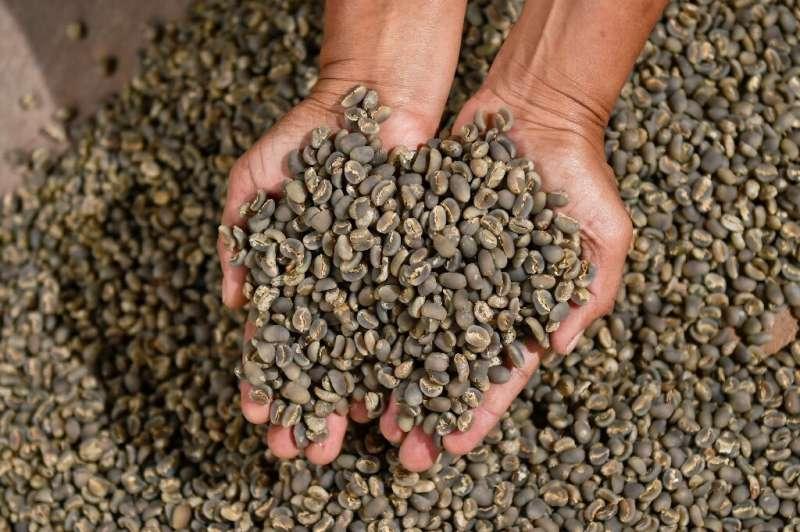 El café arábica se disparó a su nivel más alto desde 2014
