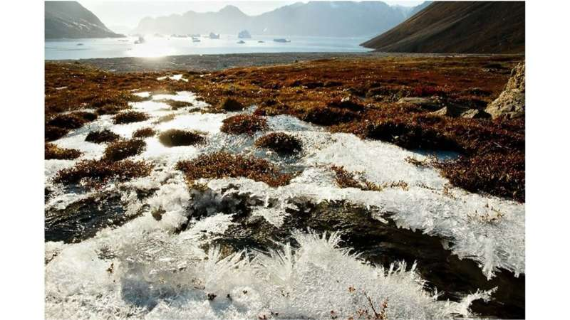 Argonne team unravels mysteries of carbon release in permafrost soils