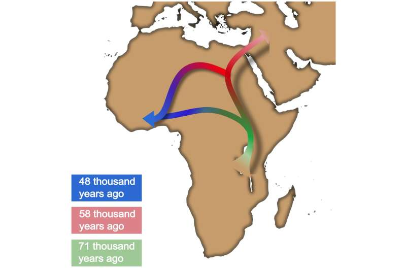 Artificial intelligence suggests a new narrative for the Out of Africa process