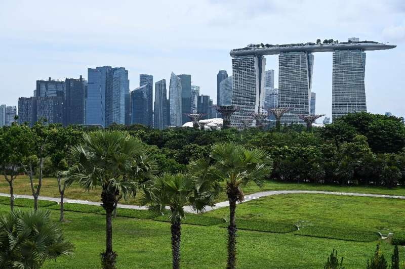 As alarm about global warming has grown and urban development goals have shifted, replanting initiatives have sprouted in cities