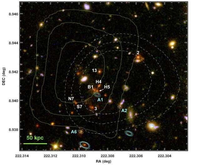 Astronomers identify faint radio-jets in the galaxy cluster CLJ1449+0856