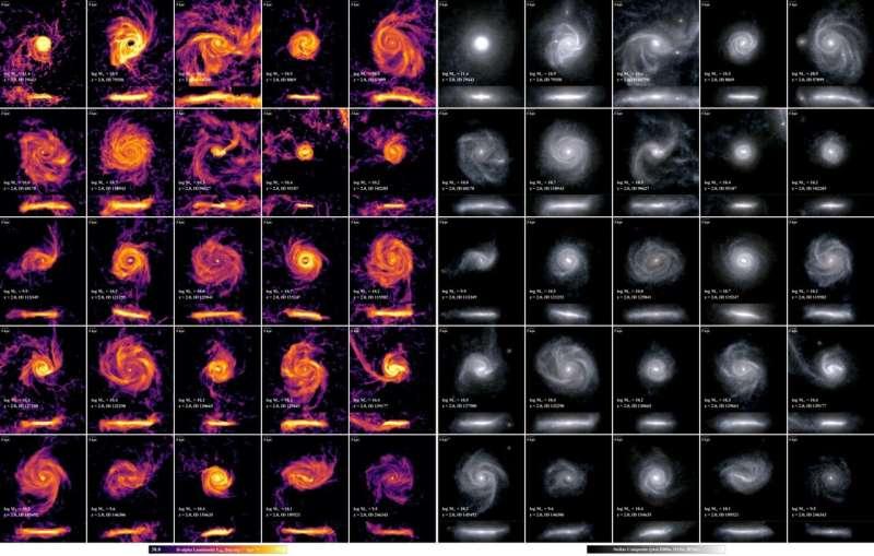 At cosmic noon, puffy galaxies make stars for longer