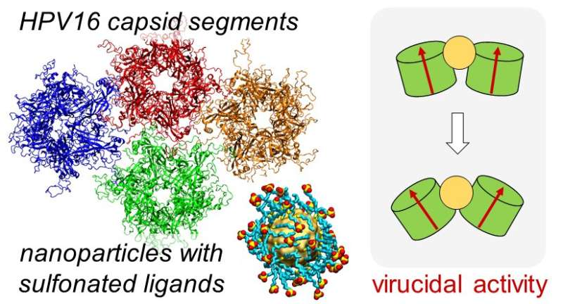 Atomistic simulations and AI-based findings shed light on nanoscale therapeutics and new brain sensors