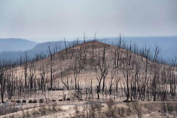 Australia's Black Summer a climate wake-up call