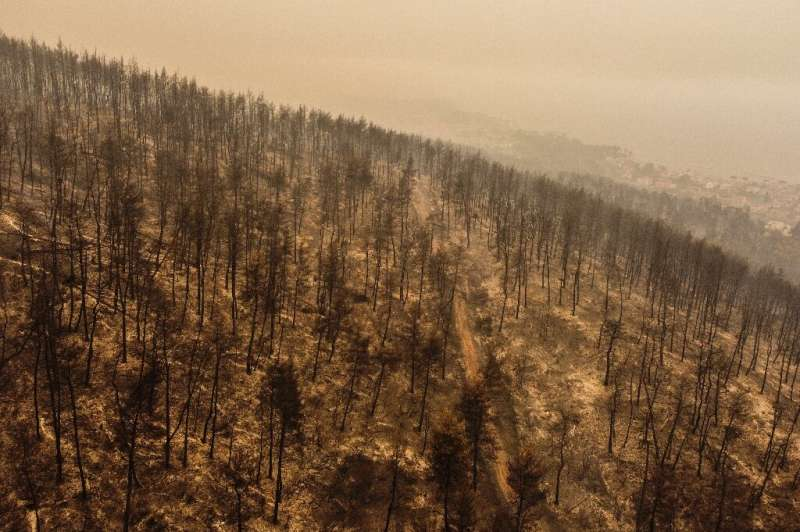 Authorities organised mass evacuations to avoid human losses