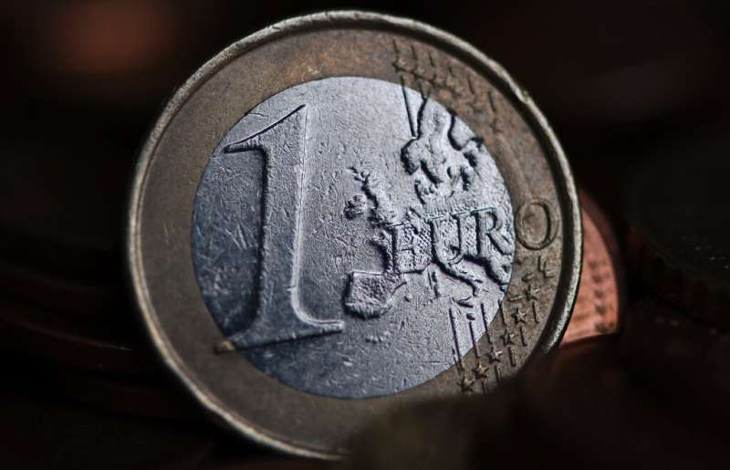 A virtual euro should arrive within five years but the physical coins and notes will stay
