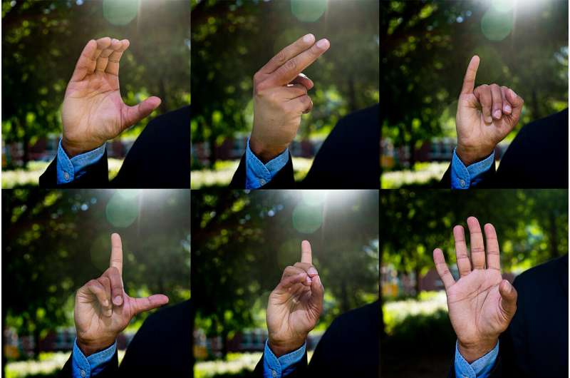 Babies respond to sign language: What does that tell us about human nature?