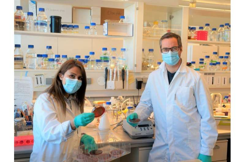 Bacteria use enzymes to defuse the immune system