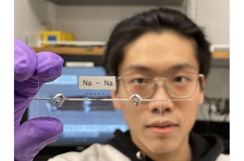 Bai lab develops stable, efficient, anode-free sodium battery
