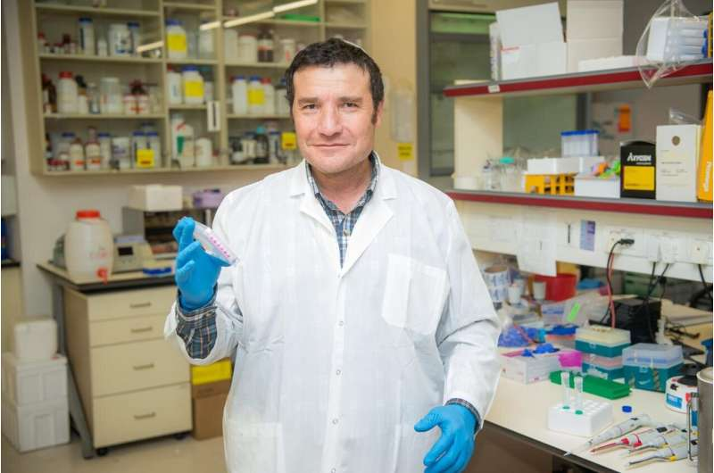 Bar-Ilan University researchers increase life expectancy in mice by an average of 30%