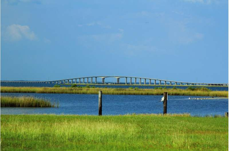 Barrier Island marine ecosystem altered by storm events