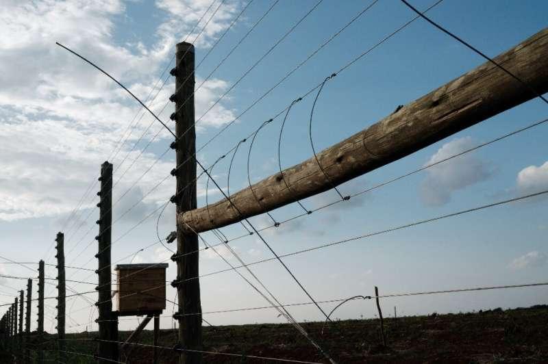 Barrier: The electric fence at the KiliAvo Fresh Ltd avocado farm in Kimana