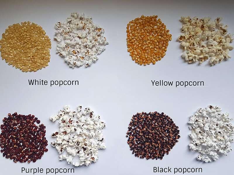 Mejor potencial para hacer palomitas de maíz