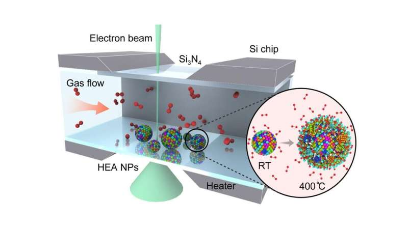 Better together: Scientists discover applications of nanoparticles with multiple elements