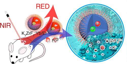 Biodegradable inorganic upconversion nanocrystals developed for in vivo applications