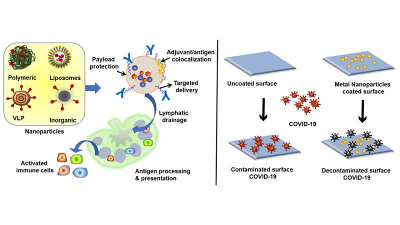Biomaterials could mean better vaccines, virus-fighting surfaces
