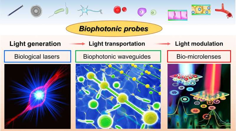 Biophotonic probes for bio-detection and imaging