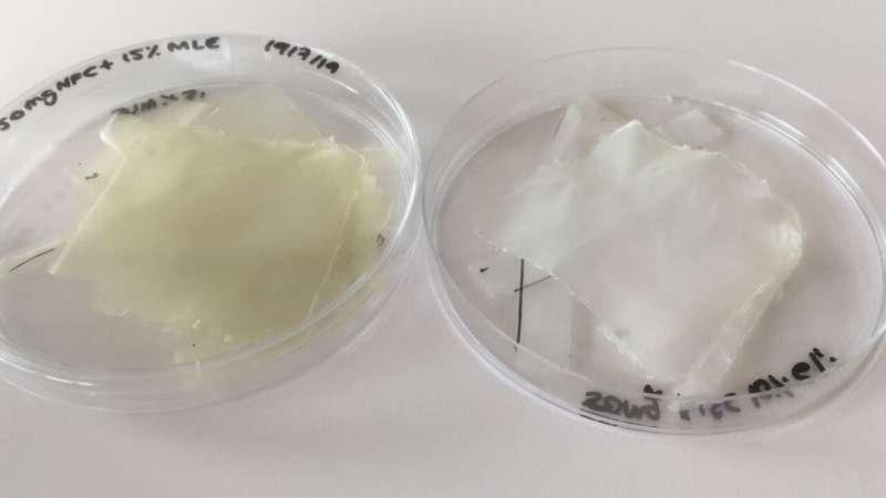 Bioplastic made of nanocellulose and mango to improve food preservation