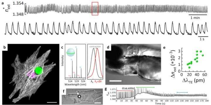 Biosensing with whispering-gallery mode lasers