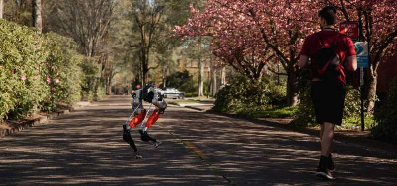 Bipedal robot developed at Oregon State makes history by learning to run, completing 5K