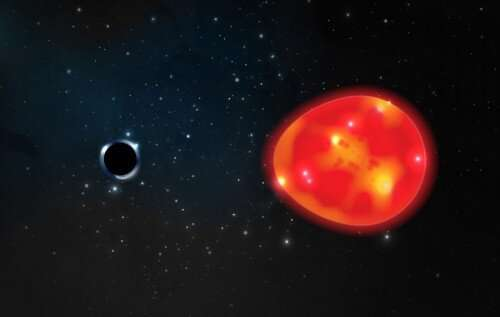 Black hole is closest to Earth, among the smallest ever discovered