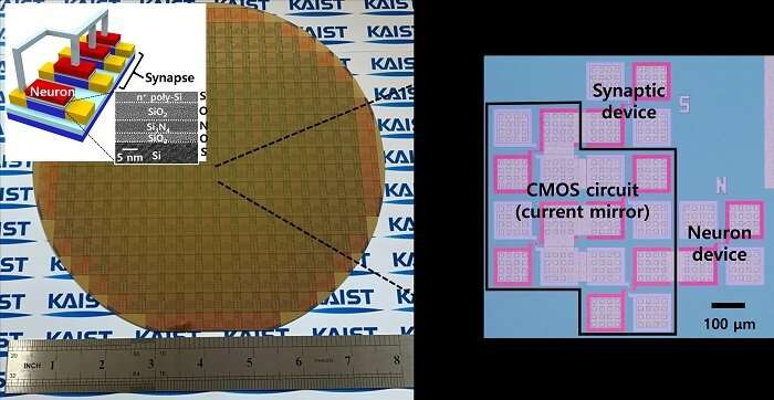 Brain-inspired, highly scalable neuromorphic hardware presented