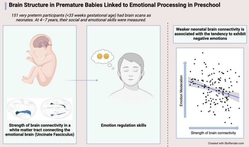Brain structure in premature babies linked to emotional processing in preschool