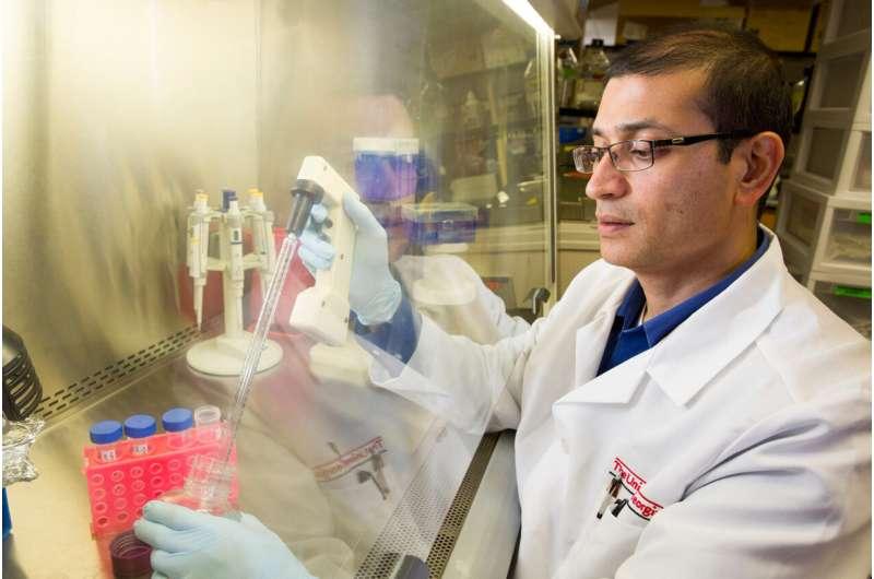 'Brain glue' helps repair circuitry in severe traumatic brain injury