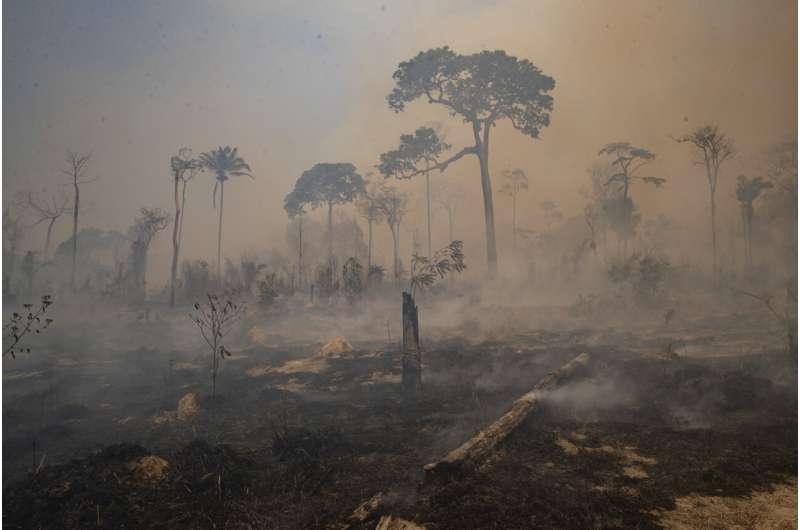 Brazil forest fire season underway and raising concern