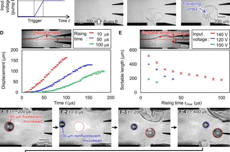 Breakthrough purification of fossil pollen using a new large-particle on-chip sorter