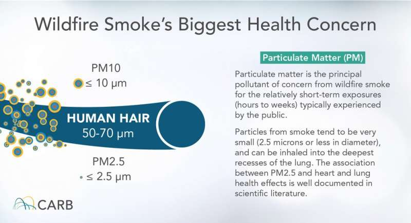 Breathing wildfire smoke can affect the brain and sperm, as well as the lungs