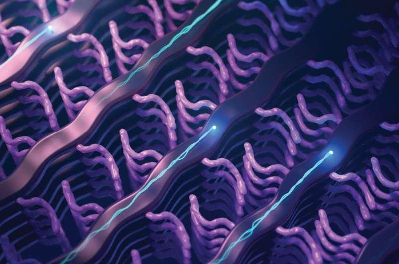 Building a better biosensor polymer