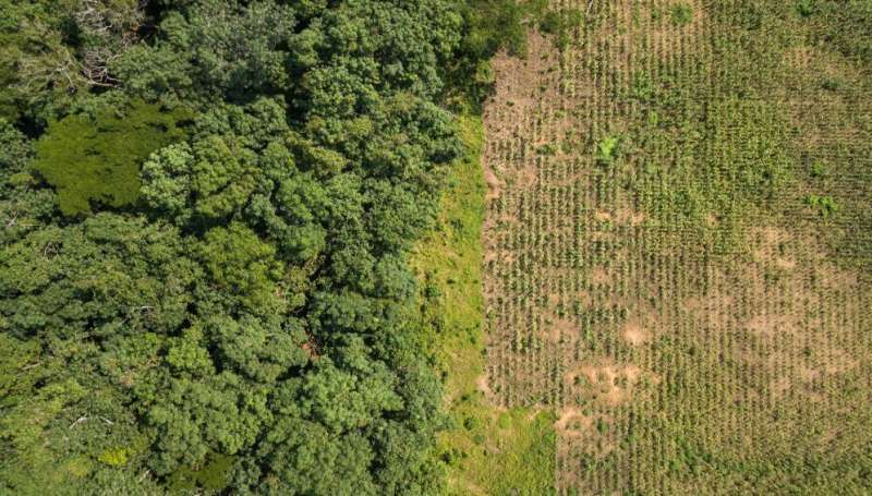 Call to build resilient food systems on existing farmland