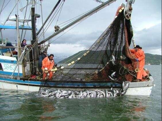 ¿Pueden las pesquerías beneficiarse de la biodiversidad y conservarla también?