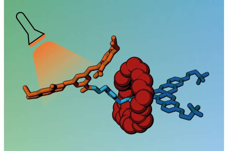 Cancer drugs could be delivered in molecular cages unlocked by light
