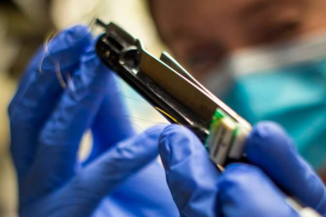 Carbon fiber brain-implant electrodes show promise in animal study