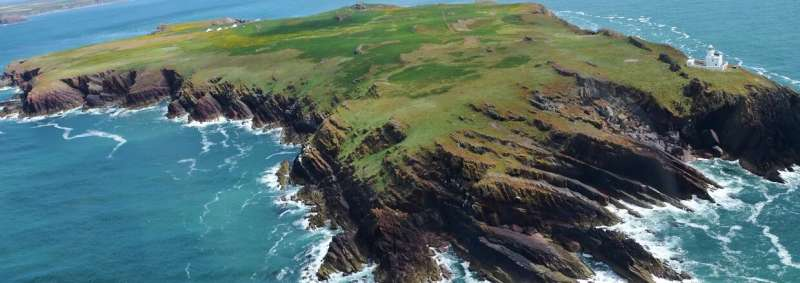 Opportunity to discover a story that dates back to 9000 tells a new story on Skokholm Island, Pembrokeshire