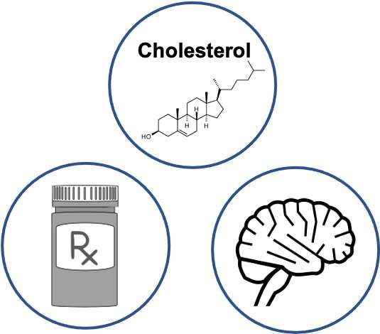 Changes in how cholesterol breaks down in the body may accelerate progression of dementia